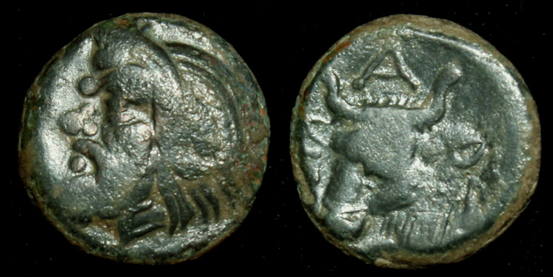 Panticapaeum, Old Satyr and Ox, 325 BC