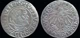 Albert of Prussia, AR Gross, 1538