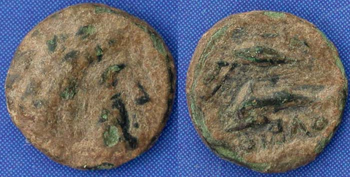 Olbia City issue, Apollo, dolphin seed & bow, c. 360-320 BC
